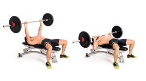 Barbell bench press chest exercises