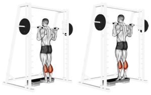 Smith-Machine-Standing-raise-Calf-exercises