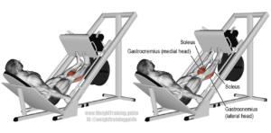 calf exercises press