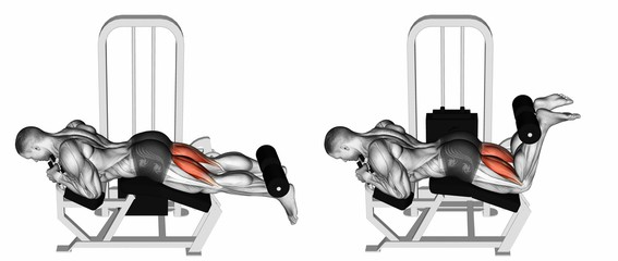lying leg curl hamstrings exercises